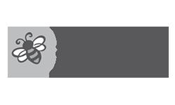 Big Buzz Idea Group Logo